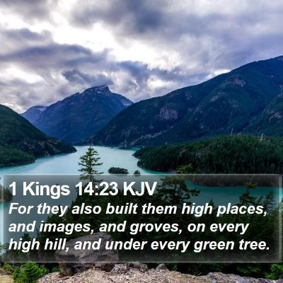 1 Kings 14:23 KJV Bible Verse Image