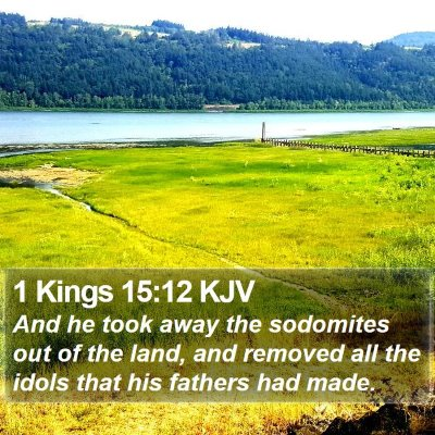 1 Kings 15:12 KJV Bible Verse Image