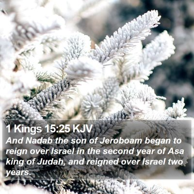 1 Kings 15:25 KJV Bible Verse Image