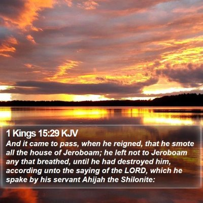 1 Kings 15:29 KJV Bible Verse Image
