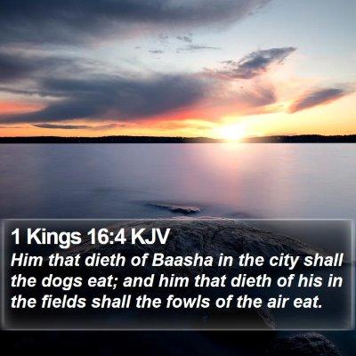 1 Kings 16:4 KJV Bible Verse Image