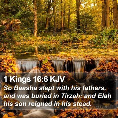 1 Kings 16:6 KJV Bible Verse Image