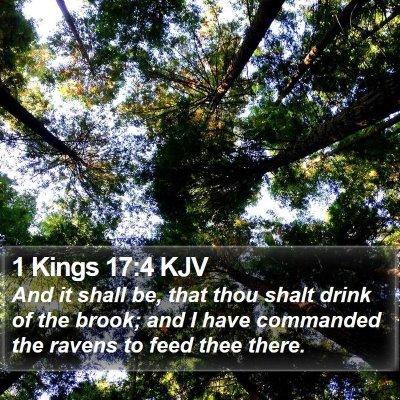 1 Kings 17:4 KJV Bible Verse Image