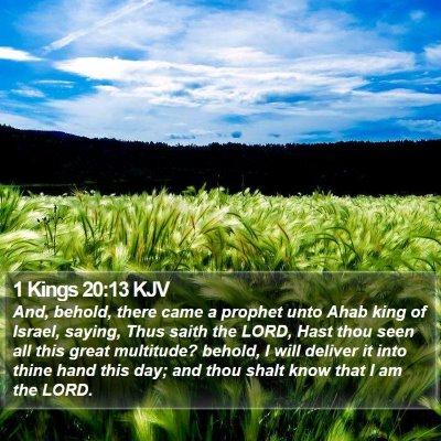 1 Kings 20:13 KJV Bible Verse Image