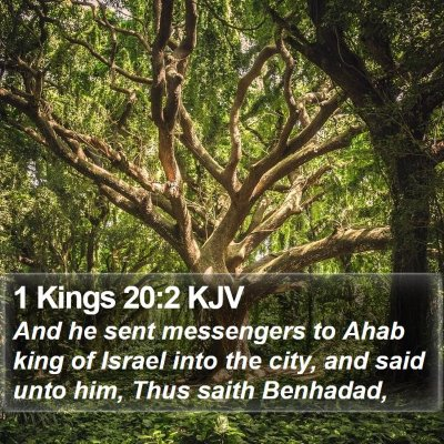 1 Kings 20:2 KJV Bible Verse Image