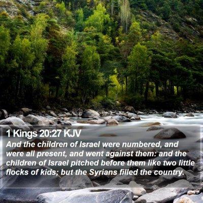1 Kings 20:27 KJV Bible Verse Image
