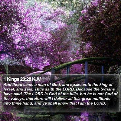 1 Kings 20:28 KJV Bible Verse Image