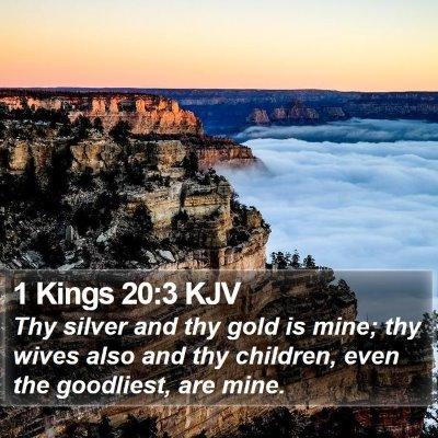 1 Kings 20:3 KJV Bible Verse Image