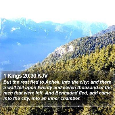 1 Kings 20:30 KJV Bible Verse Image