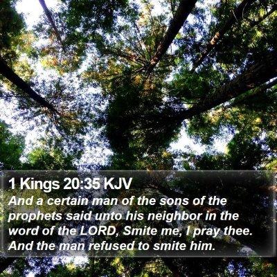 1 Kings 20:35 KJV Bible Verse Image