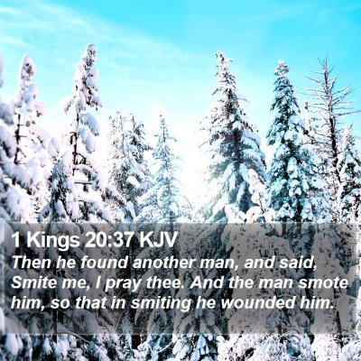 1 Kings 20:37 KJV Bible Verse Image
