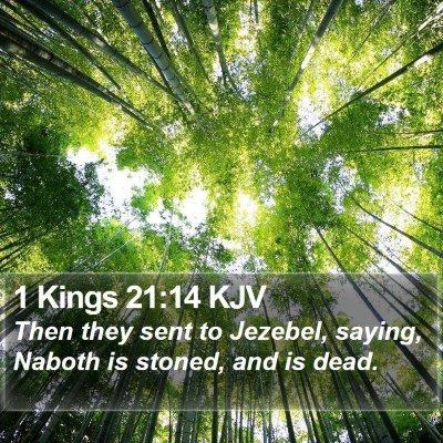 1 Kings 21:14 KJV Bible Verse Image