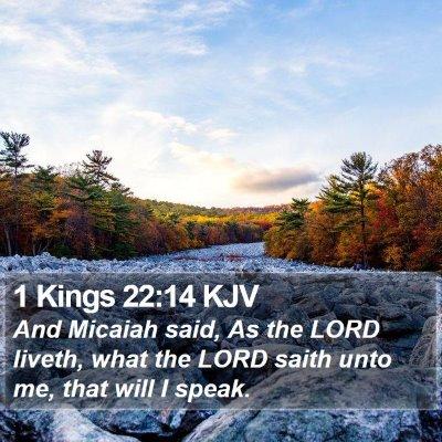 1 Kings 22:14 KJV Bible Verse Image