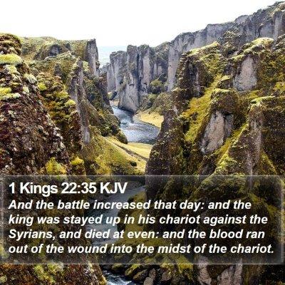 1 Kings 22:35 KJV Bible Verse Image