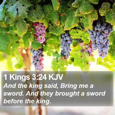 1 Kings 3:24 KJV Bible Verse Image