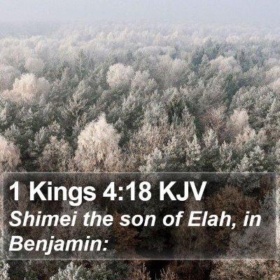1 Kings 4:18 KJV Bible Verse Image