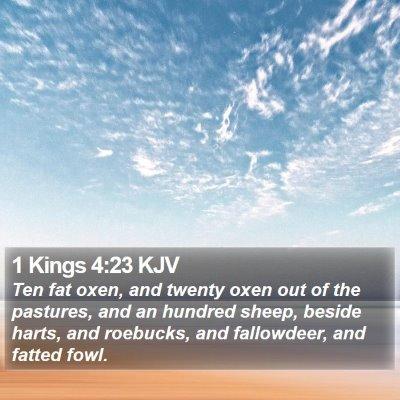 1 Kings 4:23 KJV Bible Verse Image