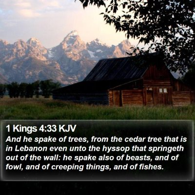 1 Kings 4:33 KJV Bible Verse Image