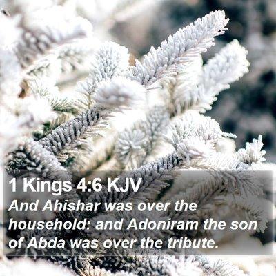 1 Kings 4:6 KJV Bible Verse Image
