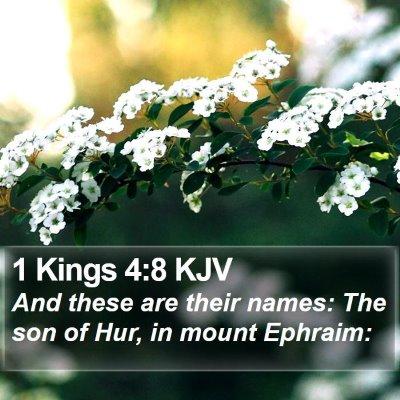 1 Kings 4:8 KJV Bible Verse Image