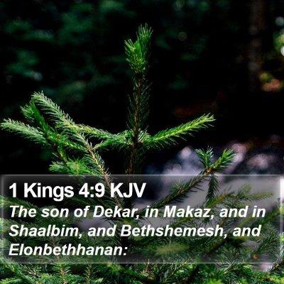 1 Kings 4:9 KJV Bible Verse Image