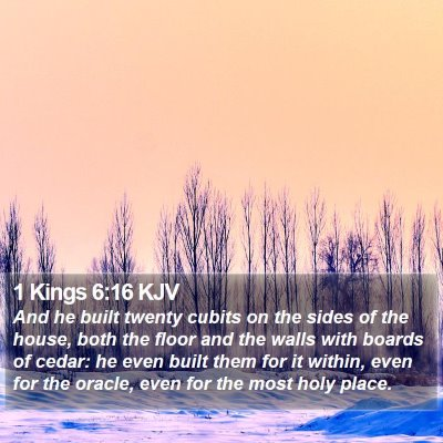 1 Kings 6:16 KJV Bible Verse Image