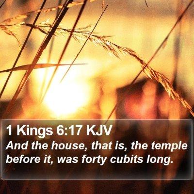 1 Kings 6:17 KJV Bible Verse Image