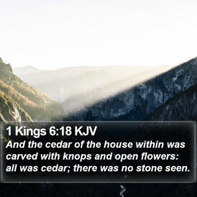 1 Kings 6:18 KJV Bible Verse Image