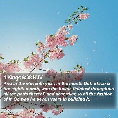 1 Kings 6:38 KJV Bible Verse Image