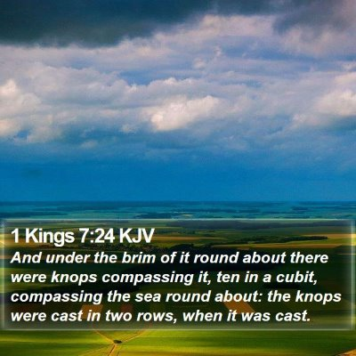 1 Kings 7:24 KJV Bible Verse Image