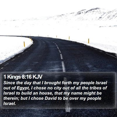 1 Kings 8:16 KJV Bible Verse Image
