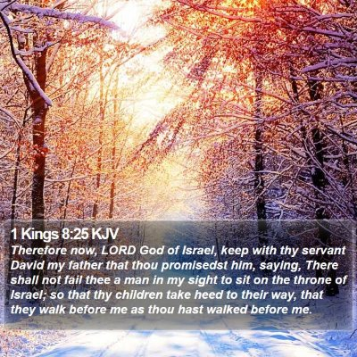 1 Kings 8:25 KJV Bible Verse Image