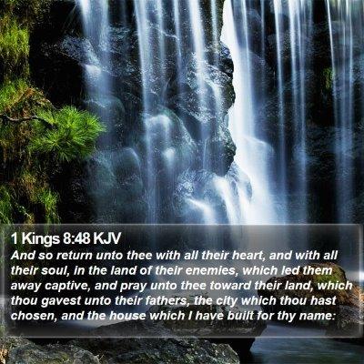 1 Kings 8:48 KJV Bible Verse Image
