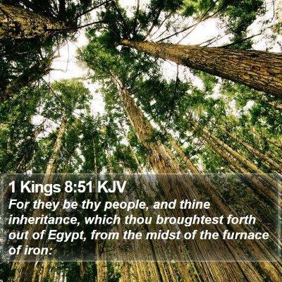 1 Kings 8:51 KJV Bible Verse Image