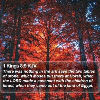 1 Kings 8:9 KJV Bible Verse Image