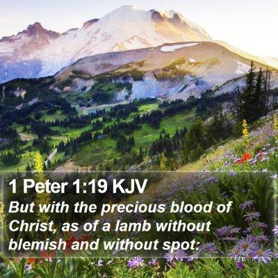 1 Peter 1:19 KJV Bible Verse Image