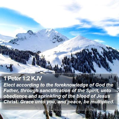 1 Peter 1:2 KJV Bible Verse Image