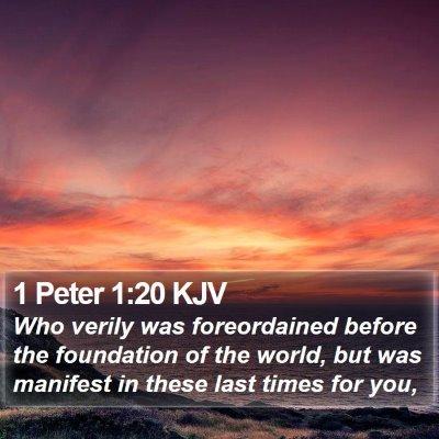 1 Peter 1:20 KJV Bible Verse Image