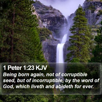 1 Peter 1:23 KJV Bible Verse Image