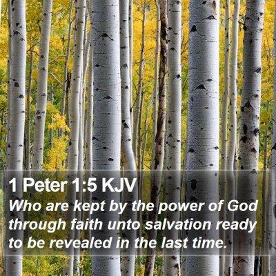 1 Peter 1:5 KJV Bible Verse Image