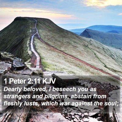1 Peter 2:11 KJV Bible Verse Image