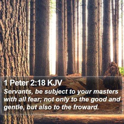 1 Peter 2:18 KJV Bible Verse Image