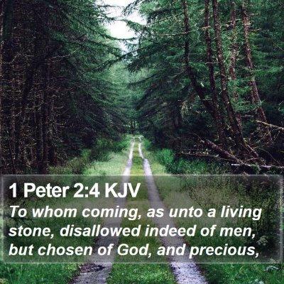 1 Peter 2:4 KJV Bible Verse Image