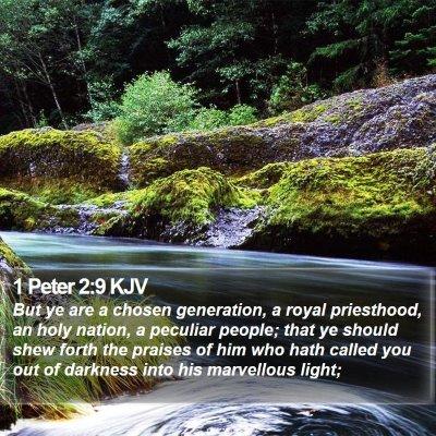 1 Peter 2:9 KJV Bible Verse Image