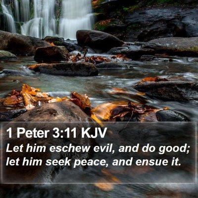 1 Peter 3:11 KJV Bible Verse Image