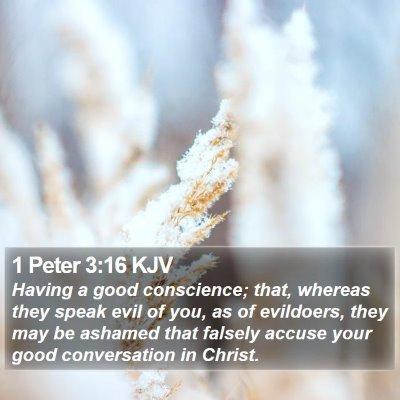 1 Peter 3:16 KJV Bible Verse Image