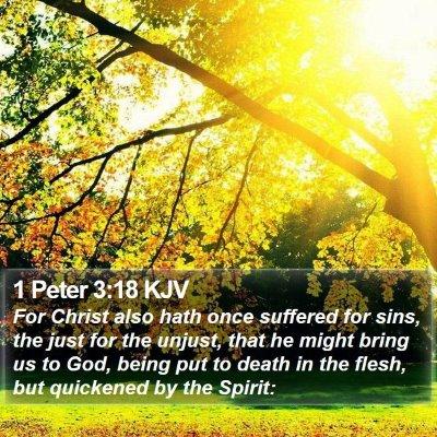 1 Peter 3:18 KJV Bible Verse Image