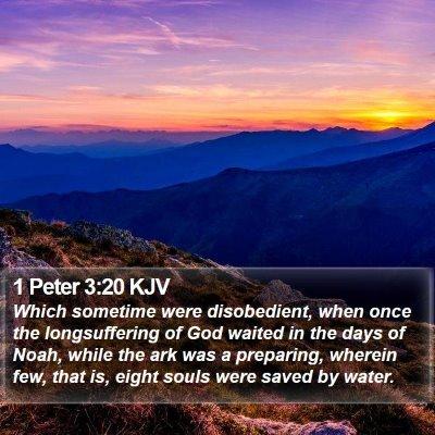 1 Peter 3:20 KJV Bible Verse Image