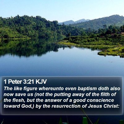 1 Peter 3:21 KJV Bible Verse Image