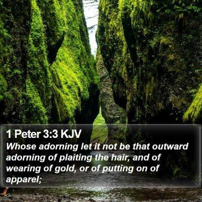 1 Peter 3:3 KJV Bible Verse Image